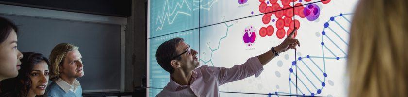 Agilidade no DNA empresarial